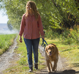 Woman walking a dog outdoors on a sunny day