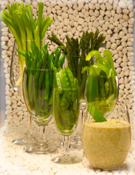 Various glasses holding different green vegetables